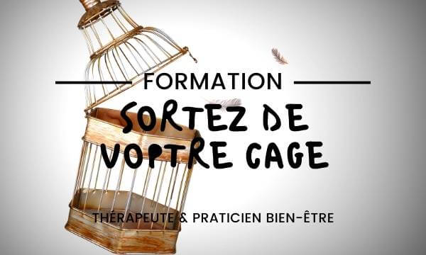 formation-mindset-therapeute